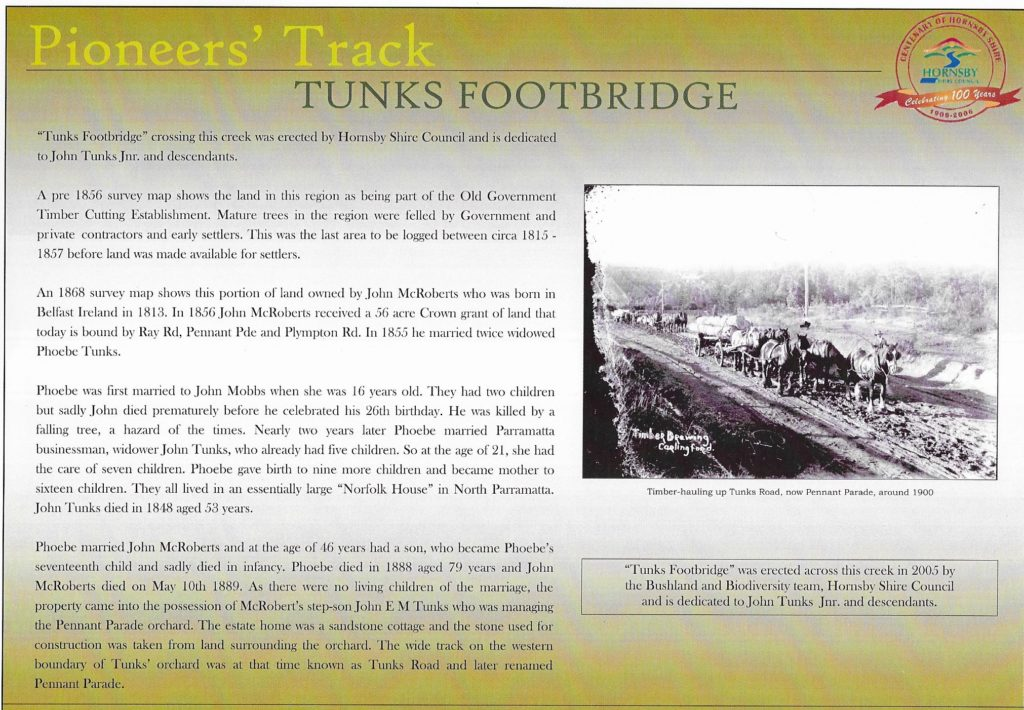 Tunks Footbridge